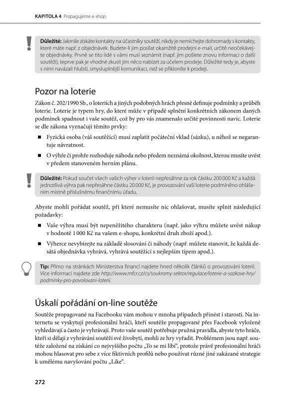 15fa42dba82 Kniha  Jak vytvořit úspěšný a výdělečný internetový obchod -
